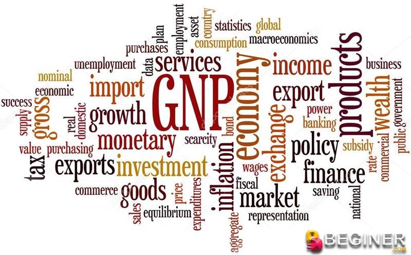 GNP là gì?